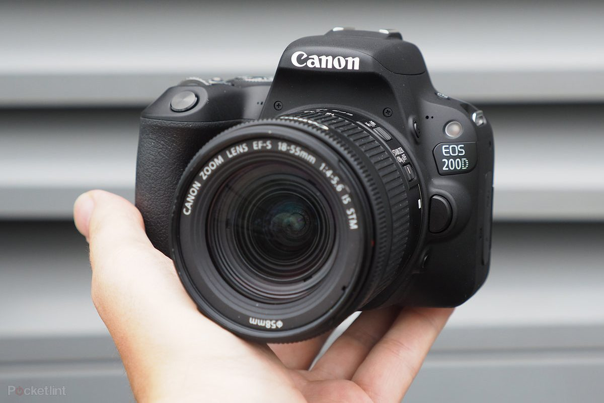 Most Affordable Canon Cameras in 2020